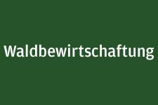 Button_Waldbewirtschaftung_mittel_schmal